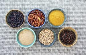 Ayurveda Montreal health nutrition